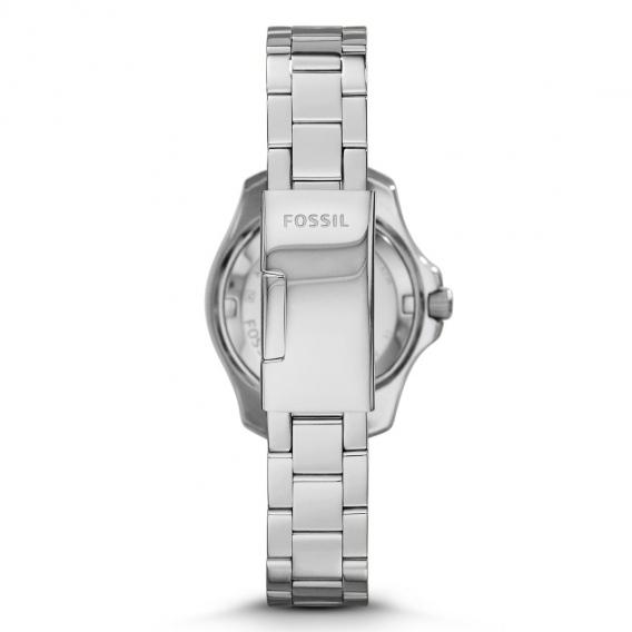 Fossil kell FO3166