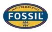 Fossil piniginės ir kortelių dėklai